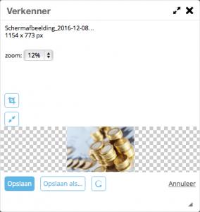 Hoe kan ik afbeeldingen bijsnijden en verkleinen in de drag & drop editor?